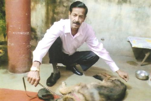 DOGS TRAINER IN PATNA