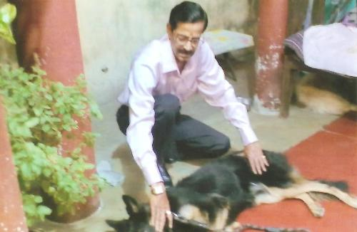 PETS TRAINER DOCTOR IN PATNA