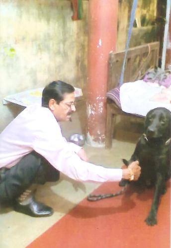 DOGS TRAINER CLINIC IN PATNA