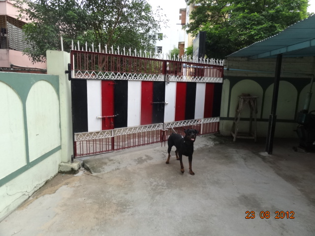 GIRLS HOSTEL IN BORING ROAD