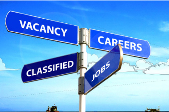 PLACEMENT CONSULTANCY IN RANCHI