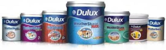 AUTHORISED DEALER OF DULUX PAINTS IN BEUR MORE, PATNA