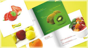 MULTI COLOUR OFFSET PRINTING SERVICES IN RANCHI