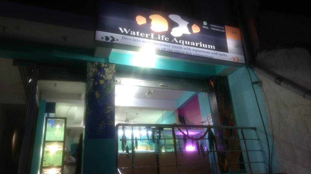 LIFE CARE AQUARIUM IN RANCHI