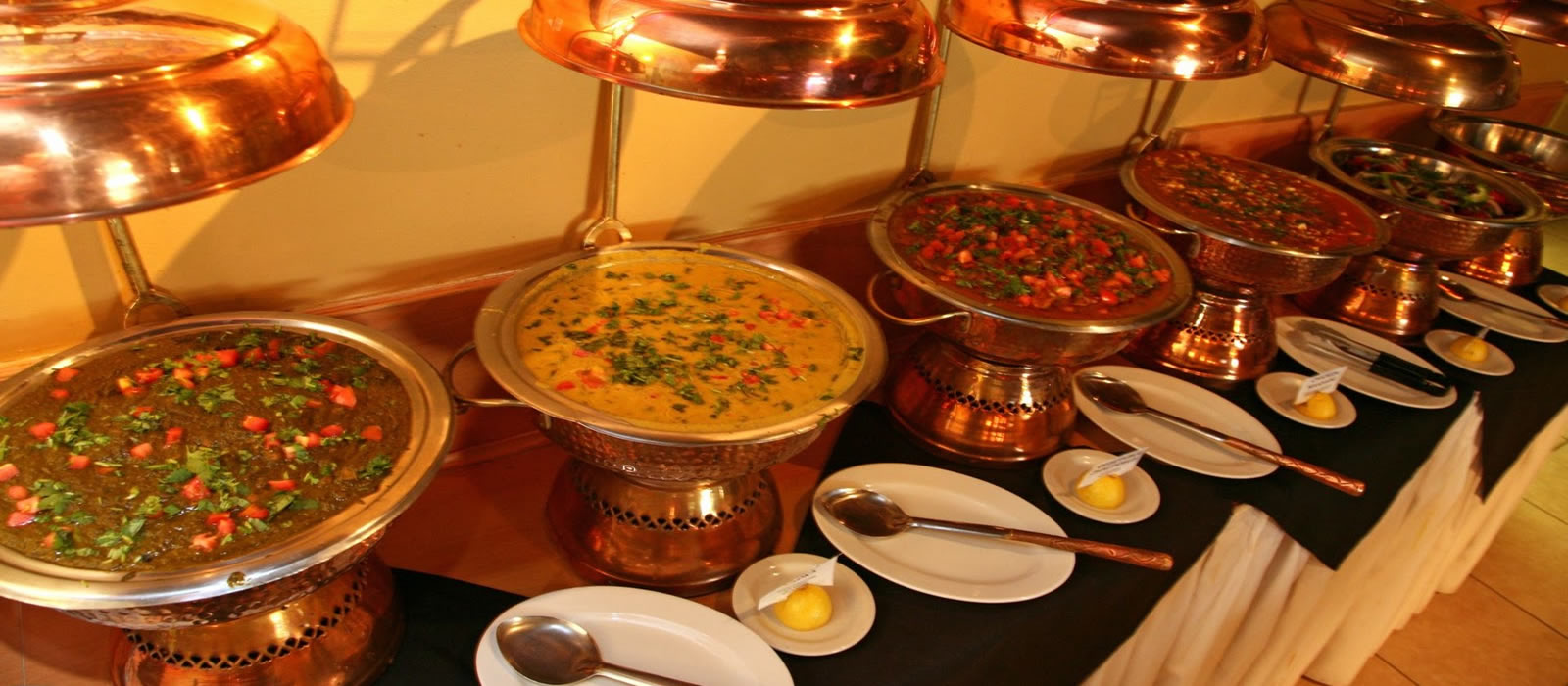Catering service kadru in ranchi g k electronics for Catering companies