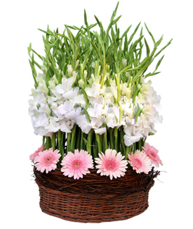 FLOWERS GIFT IN PATNA FLORIST